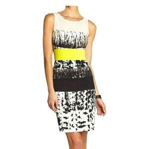 BCBG MaxAzria Sleeveless Bodycon Size 2 Mini Dress